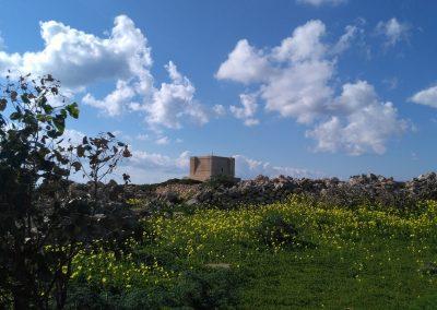Fort Comino