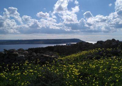 Malta from Comino 4