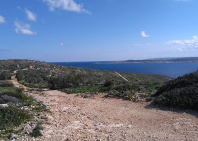 Malta from Comino