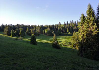Granica - Cistinka-pre-vysoku-zver.jpg